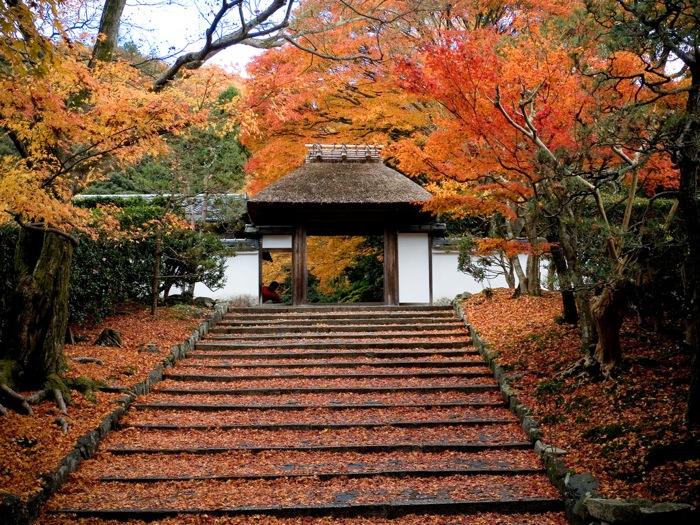 3 semaines pour découvrir le Japon – 2ème partie