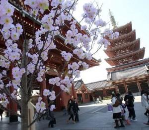 japon visite
