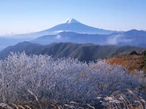 japon photo